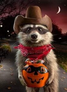 Halloween Racoon